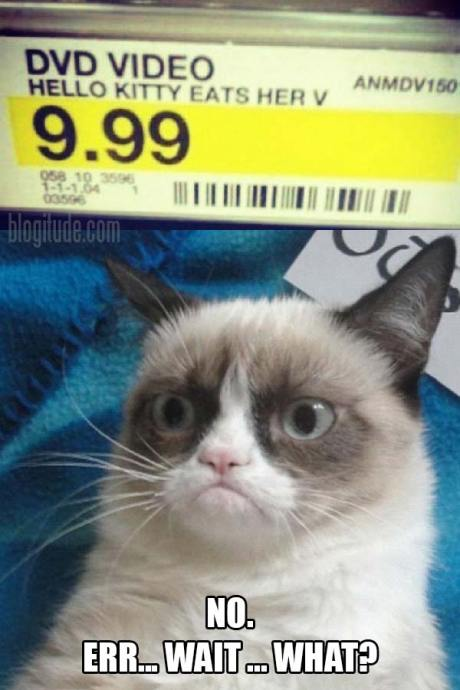 "Target Price Tag: ""DVD Video, Hello Kitty Eats her V, 9.99""  Grumpy Cat's Response: ""No. Err... Wait.. What?"""