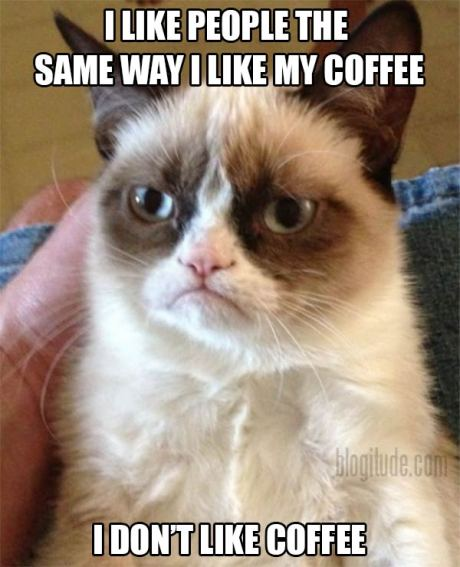 """Grumpy Cat: """"I like people the same way I like my coffee.  I don't like coffee."""""""