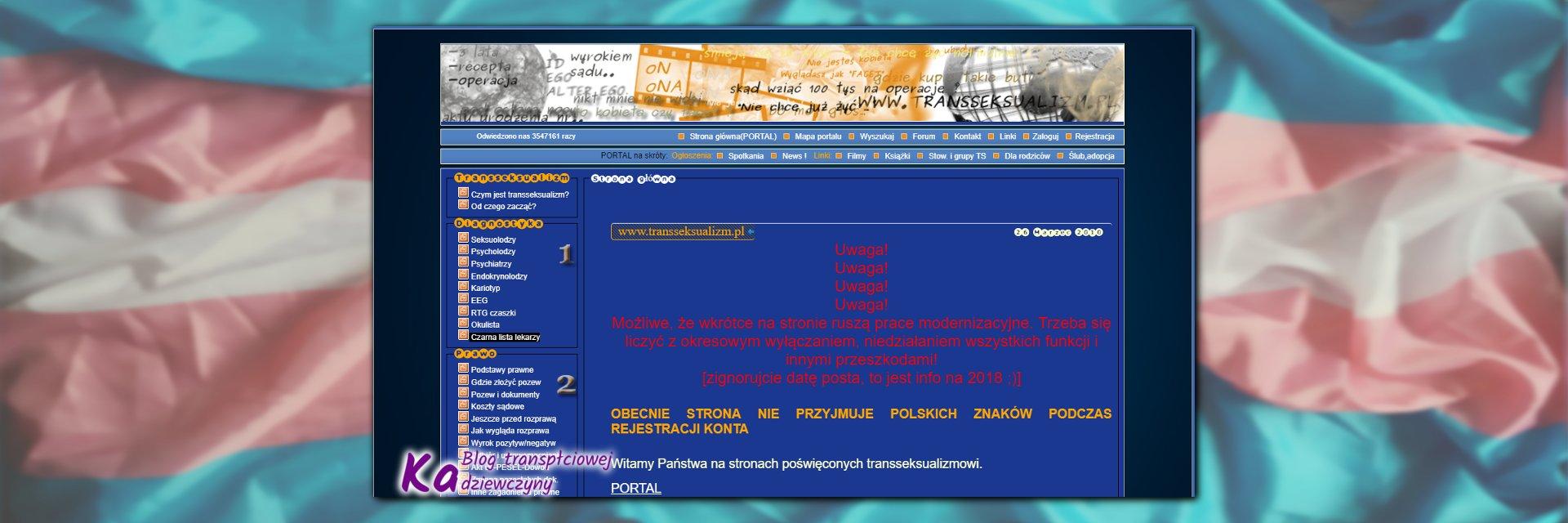 niebieskie forum, wygląd portalu