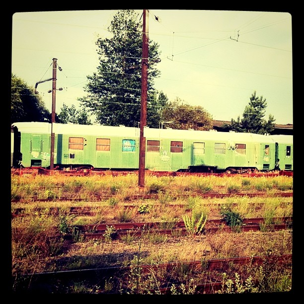 Train à l'abandon à Cronenbourg
