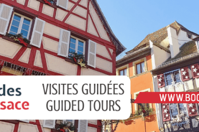 étudiants questions guide alsace
