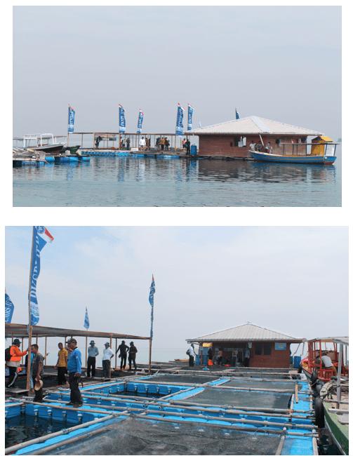 Stasiun Penelitian Balai Sea Farming PKSPL LPPM IPB Semak Daun