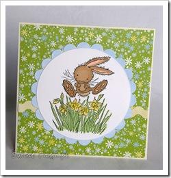 , Wielkanocnie i ścinkowo za razem :)