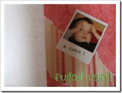 , Scrapbook – wydzierany album