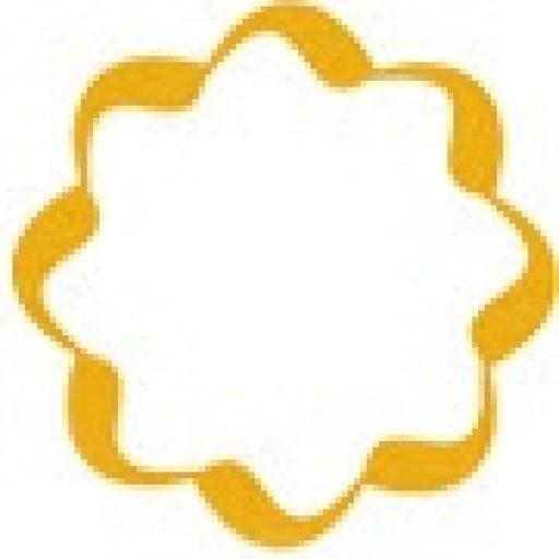 (c) Bloglaris.com.br