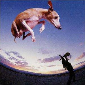 Paul Gilbert - Flying Dog (1999)