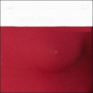Triggerfinger - What Grabs Ya? (2008)