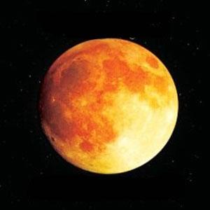 Southside Johnny with La Bamba's Big Band - Grapefruit Moon / The Songs of Tom Waits (2008)