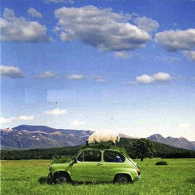 Belfast Food - Zeleni album (2006)