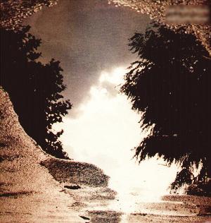 Sad Lovers & Giants - Feeding the Flame (1983)