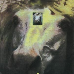 Hallo Venray - King (1990)