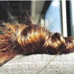 Ettől az egy összetevőtől gyorsabban nőhet majd a hajad, fényesebb és egészségesebb lehet! (videó)