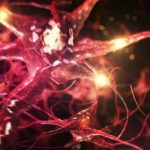 TÉGY A MENTÁLIS LEÉPÜLÉS ELLEN!!! Így stimuláld az agyi aktivitásodat!!!