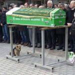 A kutya szomorúan ült a koporsó mellett! A gyászolók megdöbbentek azon, ami ezután történt!