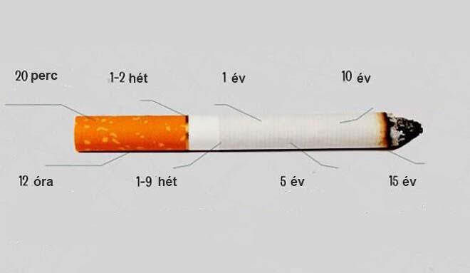 Tudd meg végre, hogy mi történik a testeddel, ha abbahagyod a dohányzást