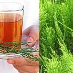 Egy tea amit a 40 év fölöttieknek rendszeresen kellene fogyasztaniuk!