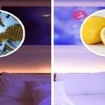 Vágj félbe egy citromot, és tedd az ágyad két oldalára, majd tapasztald meg jótékony hatásait