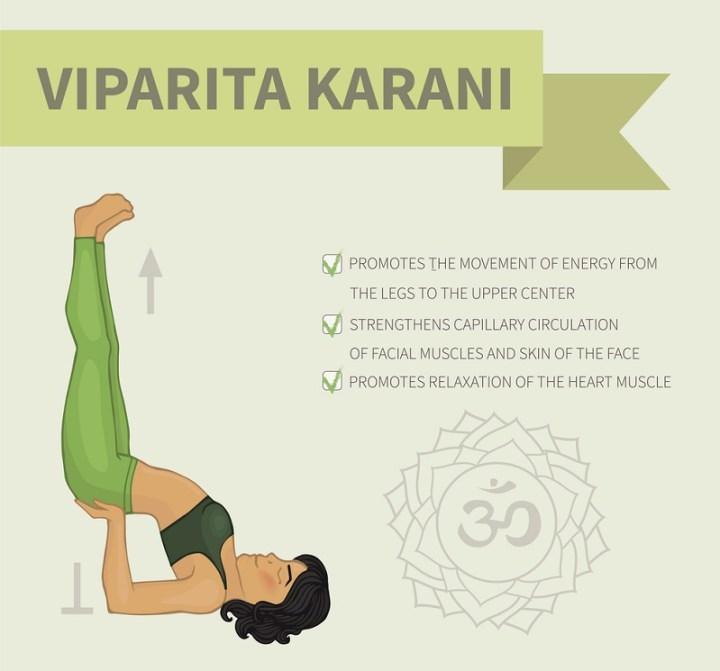Yoga infographics. Viparita Karani (Hatha yoga)