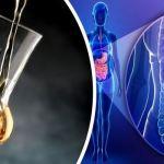 A pálinka kiváló gyulladáscsökkentő – Ám mutatunk még temérdek okot, miért jó az egészségnek