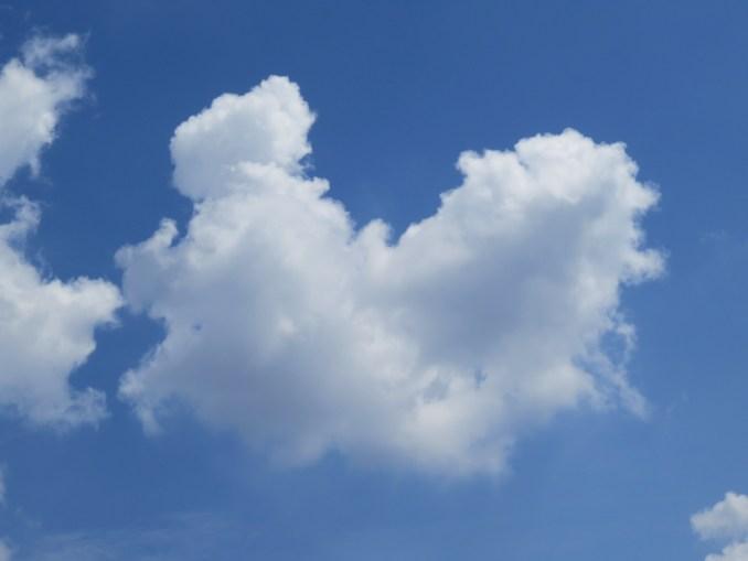 oblakleptir.jpg