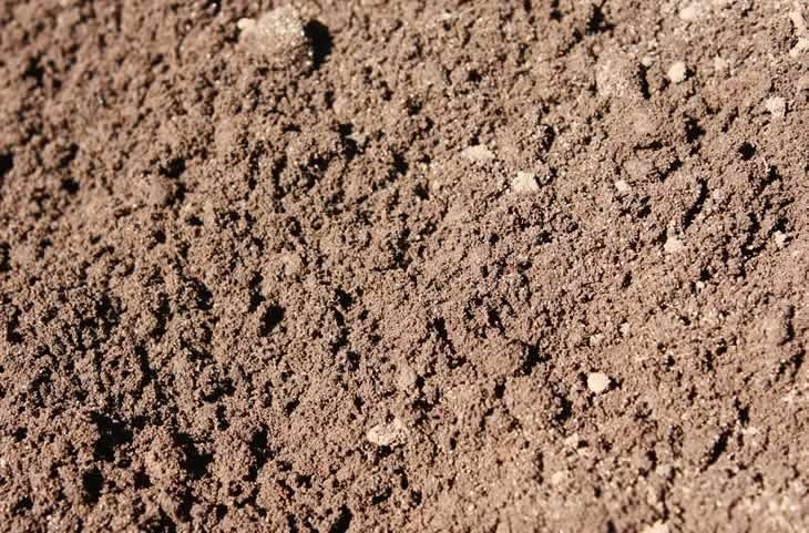 01-loam-sand-with-50-clay.jpg