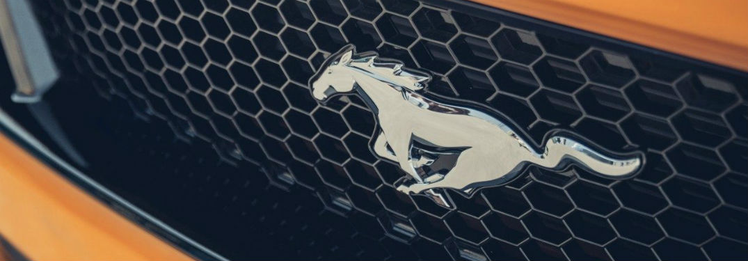 2019 ford mustang lineup