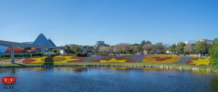 EpcotPhotoUpdate_02102016-34