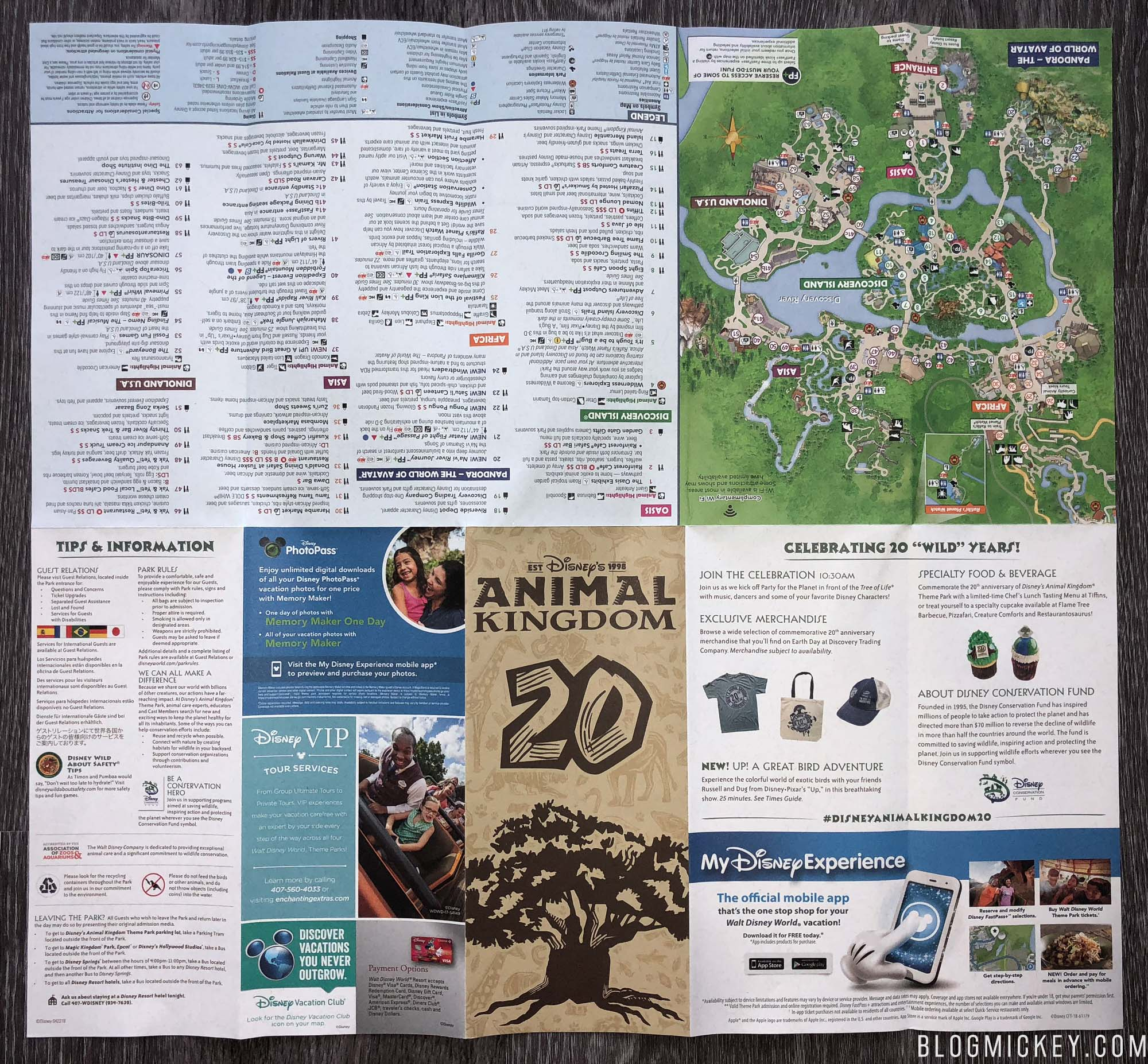 PHOTOS: Disney\'s Animal Kingdom 20th Anniversary Special ...