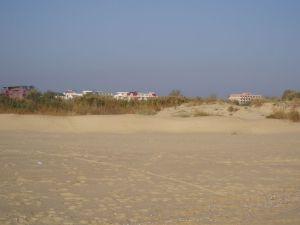 Солнечный берег. Пляж и дюны.
