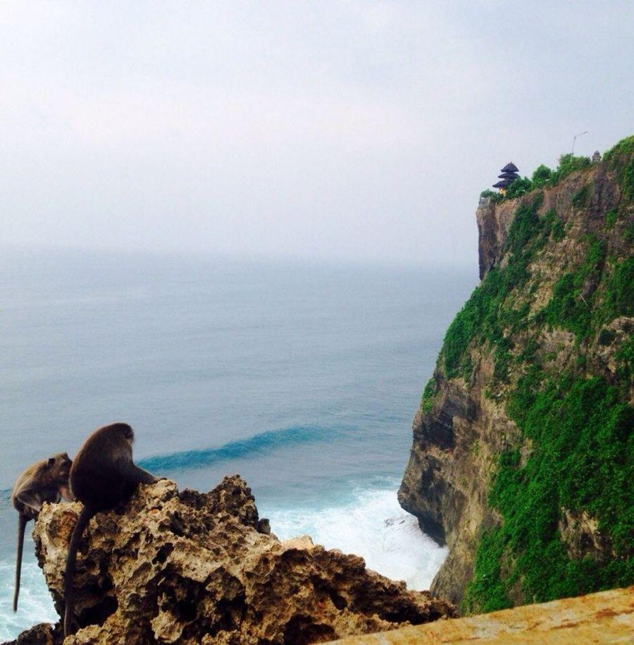 Юлия Палкина. Бали. Пейзаж.
