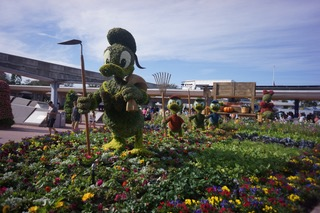 Donald Duck hedge sculpture at Disneyland