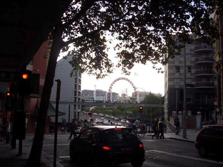 Traffic on Sydney street with a view of the big wheel
