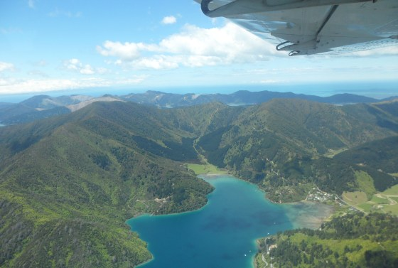 wellington-picton-scenic-flight