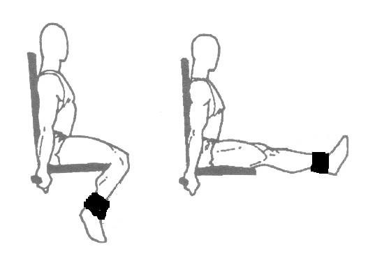leg extension from www.the-fitness-motivator.com « Blogoath