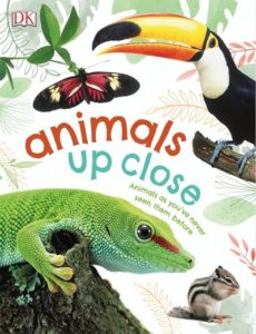 Animals Up Close