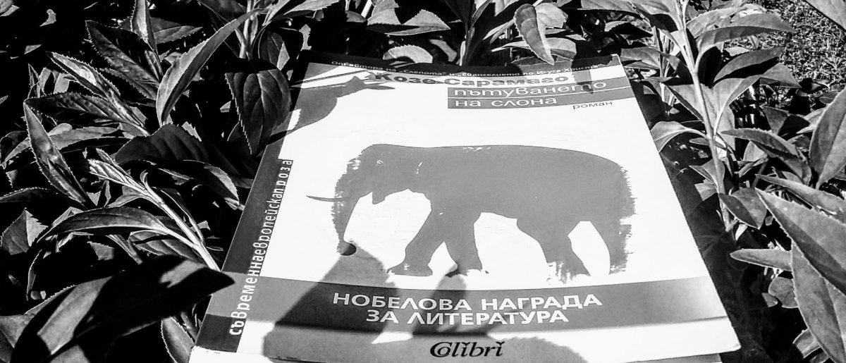Слонове и Сарамаго
