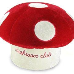 Mushroom Bean Bag Chair Slipcovered Swivel Red Blog Of Wishes Jpg