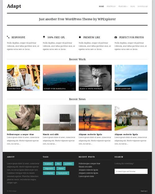 adapt wordpress theme