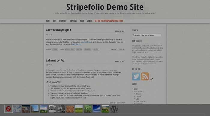 synved stripefolio theme free portfolio wordpress
