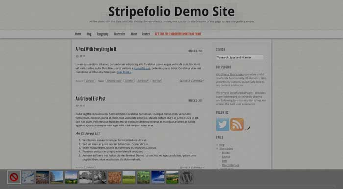 synved stripefolio theme free portfolio wordpress