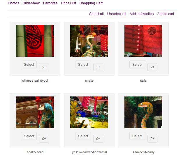 wordpress image store plugin
