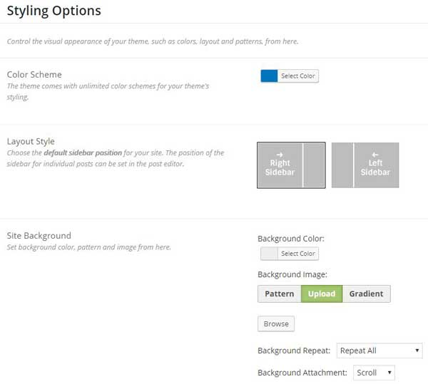 Styling options Schema WordPress