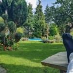 De tuin aanpakken: hier moet je aan denken!