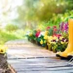Van loungeset tot parasol: zo maak je jouw tuin zomerklaar!