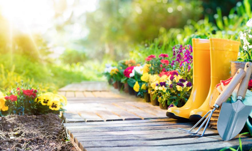 De lente is in aantocht en dat betekent dat we ons weer mogen verheugen op het lekkere weer! Onze tuin is zomerklaar, lees maar mee!