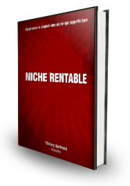 Comment Choisir Une Niche Rentable (eBook)