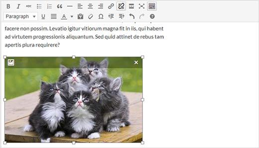 recadrer-image-wordpress