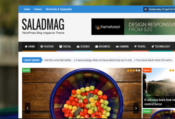 Thème-Salad-Mag