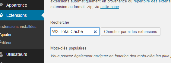 W3-Tổng-Cache-Search-Plugin