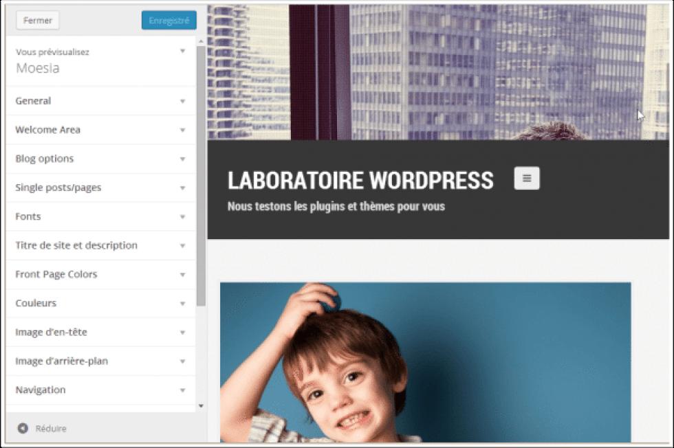 Moesia: El tema de WordPress libre de la semana | BlogPasCher